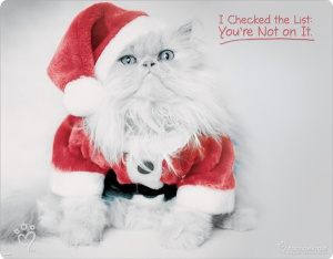 2013-bad-santa-kitty