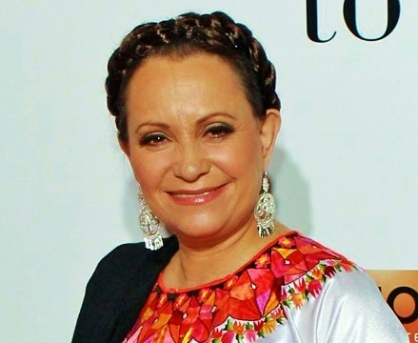 Adriana Barraza as Nellie Sonador
